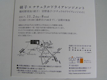 P101004492.JPG